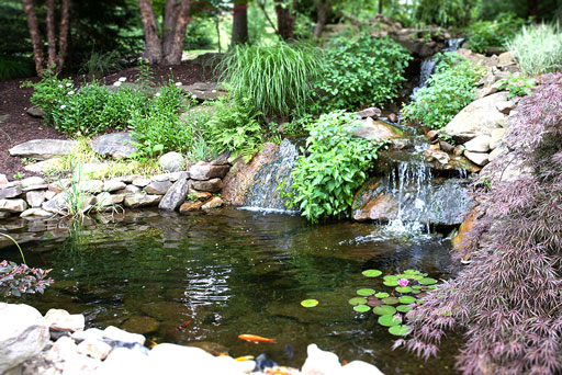 Artistic Tree & Landscape Creations hardscape services — modern home outdoor coy pond water feature