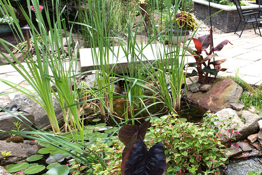 Artistic Tree & Landscape Creations hardscape services — modern home outdoor pond and landscape design