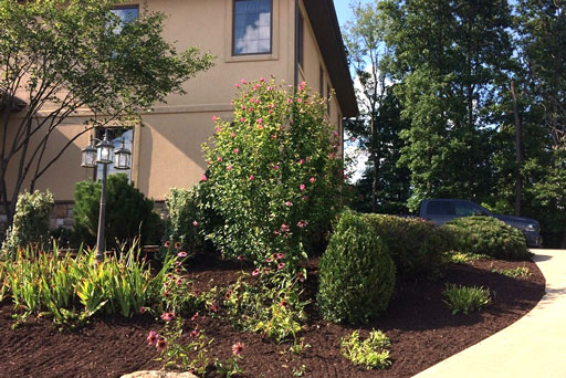 Artistic Tree & Landscape Creations residential landscape service — modern home mulching, shrubbery, landscape design