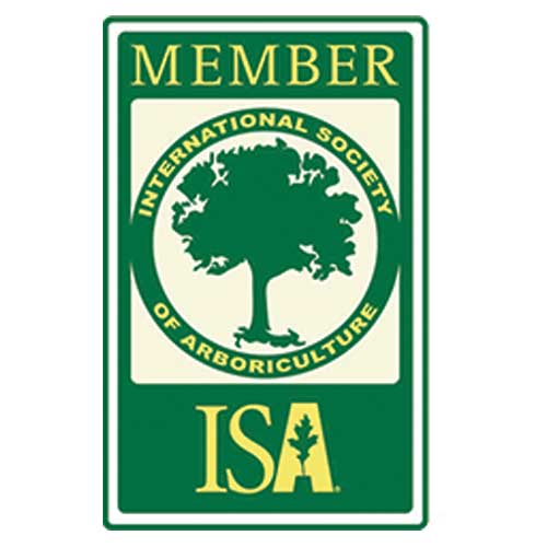 ISA Certified Arborist near me
