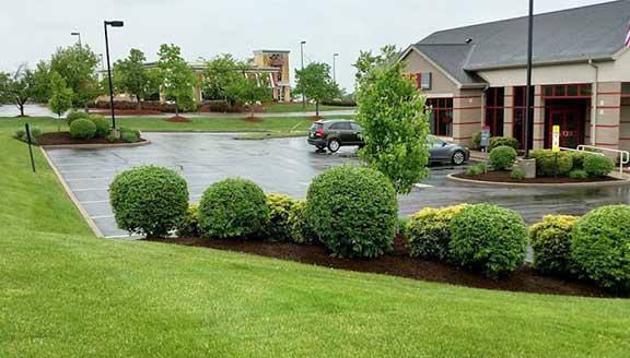 Commercial Landscape Tree Service & Property Maintenance