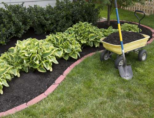 Can Mulch Rock Your Yard?